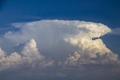 082618 - Updrafts & Anvil 027 (NebraskaSC Severe Weather Photography Videography) Tags: flickr nebraskasc dalekaminski nebraskascpixelscom wwwfacebookcomnebraskasc stormscape cloudscape severeweather severewx nebraska nebraskathunderstorms nebraskastormchase weather nature awesomenature storm thunderstorm clouds cloudsday cloudsofstorms cloudwatching stormcloud daysky badweather weatherphotography photography photographic warning watch weatherspotter chase chasers newx wx weatherphotos weatherphoto sky magicsky extreme darksky darkskies darkclouds stormyday stormchasing stormchasers stormchase skywarn skytheme skychasers stormpics day orage tormenta light vivid watching dramatic outdoor cloud colour amazing beautiful updraft anvil thunderhead stormviewlive svl svlwx svlmedia svlmediawx