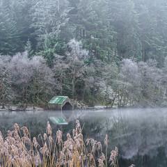 Loch Ard (burnsmeisterj) Tags: olympus omd em1 lochard reflection frost water boathouse