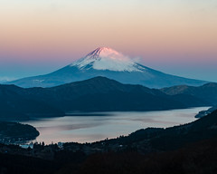 Fuji shining in the morning glow (shinichiro*) Tags: 20190102ds55685 2019 crazyshin nikond4s afsnikkor2470mmf28ged january winter fuji hakone kanagawa japan jp 大観山 lakeashinoko 芦ノ湖 morningglow 46891152371 candidate