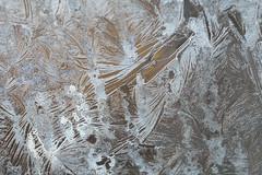 Day #4048 (cazphoto.co.uk) Tags: abstract project365 beyond4018 300119 cold ice patterns weather window macro panasonic lumix dmcgx8 panasonic45mmf28leicadgmacroelmaritasph