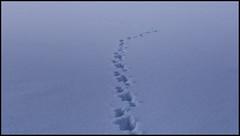 _SG_2019_01_6022_1_IMG_5748 (_SG_) Tags: schweiz suisse switzerland daytrip tour wandern hike hiking kandersteg lake oeschinen oeschinensee upper station heuberg panorama unterbärgli oberbärgli nature aussicht view unesco world heritage trail mountain berge loop winter ice frozen fishing cold