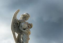 DSC_0791 (davidcasanova1994) Tags: angel child sky cloud cemetery sun winter day blue gray nikon nikkor ff fullframe d610 feeling light statue spain