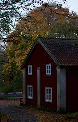 Swedish (Cederquist Christoffer) Tags: sweden sigmaart sverige sky scandinavia sunlight swedishnature gothenburg göteborg garden handheld house red architecture autumn affinityphoto art fallleafnatureoutdoorsseasongroundwoodtreeenvironmentdescendingdryfloracloseupmaplewinterparkbright