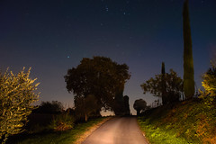 Lonely country road at night (Marco MCMLXXVI) Tags: cavriana mantova italy countryside country road lonely night nocturnal landscape scenery light stars sky trees windy notte campagna strada panorama cielo stellato sony nex5 rawtherapee mood outdoor nature darkness backroad