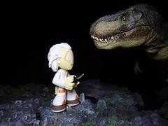 Time Travel (ridureyu1) Tags: tyrannosaurusrex papo dinosaur docbrown funko pop funkopop bobblehead mysterymini toy toys actionfigure toyphotography sonycybershotsonycybershotdscw690