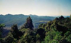 Mt Clunie 1 - view from the summit (NettyA) Tags: 1993 australia mainrangenationalpark mtclunie qld queensland bushwalk bushwalking scannedprint scenicrim seqld analogue
