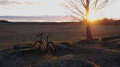 2018 Bike 180: Day 265, December 6 (olmofin) Tags: 2018bike180 finland helsinki bicycle polkupyörä sunset field pelto auringonlasku haltiala haltialan tila farm lumix 20mm f17
