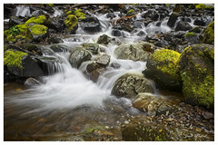 Below the Falls, Columbia River Gorge, Oregon (Jack Pickell) Tags: river stream water waterfall nature landscape columbiarivergorge oregon d750