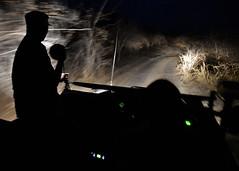 Safari de nuit, Sud Luanga, Zambie