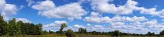Maybury-State-Park-Pana_Northville-MI_09-15-2011e (Count_Strad) Tags: mayburystatepark maybury state park northville michigan mi fallcolor field