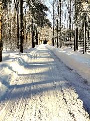 Erzgebirge im Schnee (M&K Photographie) Tags: erzgebirge baum bäume himmel landstrase landschaft weg wald winter schnee annabergbuchholz mkphotographie