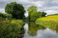 Grand Weston canal near Halberton