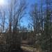 Spring Villa Park