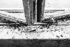 16/30 2018/01 (halagabor) Tags: nikon nikkor d610 bnw blackandwhite monochrome urban urbex urbanexploration urbanexploring urbexphotography urbexphotos exploration exploring explorer abandoned abandonment decay derelict devastation