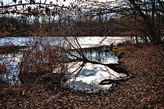 Peto jezero (roksoslav) Tags: zagreb croatia 2019 nikon z6 nikkorz2470mmf4s maksiir lake jezero