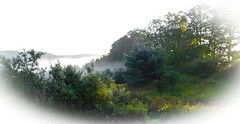 misty Vermont (bidutashjian) Tags: landscape mist fog misty foggy hazy vermont forest trees mountains moody morning mysterious nature outdoors green foliage scenic country rural nikon