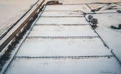 Davidsonville Snow Fields 011819-039 (richandalice) Tags: aerial annapolis davidsonville drone edgewater farm fields snow winter