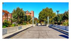 Bench Lined Bridge (Timothy Valentine) Tags: 2018 building bridge large bench tree sky streetlamp datesyearss 1018 monday providence rhodeisland unitedstatesofamerica us