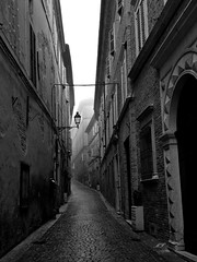Camminando per le Marche (Federica Moriconi official) Tags: marche viale italy blackandwhite biancoenero street nebbia fog pioggia rain winter landscape italianlandscape