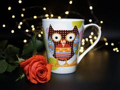 Kaffeepause (ingrid eulenfan) Tags: 2019 kaffeepause coffeebreak 365project kafffee coffee cup coffeepot tasse rose bokeh 30mm