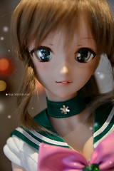 Sailor Jupiter (Nyx ☆) Tags: dollfie dream sailor moon bjd ball jointed doll