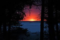 Peeking Sunrise (B2 Photography) Tags: sunrise peeking trees lake ice snow lakemichigan michigan up shore shoreline