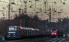 70_2019_01_18_Gelsenkirchen_Schalker_Verein_1273_004_ATLU_mit_Coilzug ➡️ Oberhausen_6185_100_DB_mit_H_Wagen ➡️ Oberhausen (ruhrpott.sprinter) Tags: ruhrpott sprinter deutschland germany allmangne nrw ruhrgebiet gelsenkirchen lokomotive locomotives eisenbahn railroad rail zug train reisezug passenger güter cargo freight fret schalkerverein schalker abrn atlu db erb rbh rpool sbbc vl 0077 0275 0422 0426 0429 0650 0826 1232 1273 3294 4482 6101 6145 6146 6185 6189 6193 9110 re rb sbahn mond habitat hunde logo natur outdoor graffiti