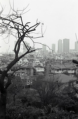 A scene in neighborhood,Hiyoshi town,Yokohama city 2018/12 No.2(taken by film camera). (HIDE@Verdad) Tags: leica leicaa elmar elmar5cm elmar5cmf35 orientalseagull400 seagull400