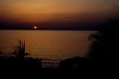 Закаты Туниса (lvv1937) Tags: море солнце пальмы отель exploré мыизяфа