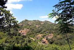Mt Abu-01 (Arnab1973) Tags: sky mountain hill india rajasthan forest wilderness green mtabu