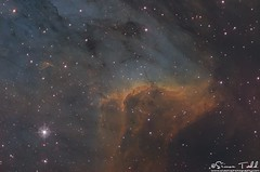 Pelican Nebula in SHO Narrowband (Simon Todd Astrophotography) Tags: pelican nebula cygnus nebulosity narrowband sho hubblepalette skywatcher qhyccd qhy5lii qhy183m eq8pro quattro newtonian f4 primalucelabs robo focuser astrophotography astronomy ukastronomy deepsky deepspace space longexposure pixinsight sequencegeneratorpro astrometrydotnet:id=nova3113083 astrometrydotnet:status=solved