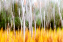 Stained Glass (Karen_Chappell) Tags: art abstract movement longexposure orange green trees nfld newfoundland pippypark landscape canada atlanticcanada avalonpeninsula stjohns move motion blur