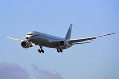 El Al Israel Airlines   Boeing 787-9   4X-EDF (David Gaitan) Tags: elal israelairlines boeing 787 7879 dreamliner aircraft airplane airliner jet wingflex retro livery flight ly ely 4xedf
