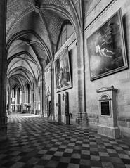 Reverence (frank_w_aus_l) Tags: orleans france monochrome cathedral arches sw bw checkered painting holy nikon nikkor d810 1635 saintecroixdorléans croix orléans départementloiret frankreich fr
