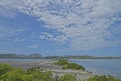 Praia na lagoa (mcvmjr1971) Tags: yellow ilha do pontal piratininga lagoa nikon mmoraes d800e lens sigma 2435 art
