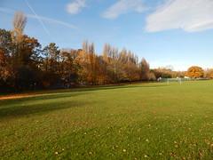 2018-11-14 10.23.28 (aimiecoltelli) Tags: downham grove park eltham south east london chrinbrook meadows railway station