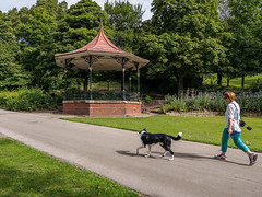 Bandstand - Queens Park, Castleford (Peter.Bartlett) Tags: peterbartlett bandstand urban olympusomdem5 uk m43 people dog walking woman microfourthirds unitedkingdom westyorkshire colour castleford england gb