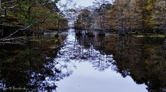 2018 Barnfull 6D (18)-Edit (Scott Sanford Photography) Tags: 6d canon ef50mmf14 eos fall naturalbeauty naturallight nature outdoor reflection texas topazlabs water colors martindiesjrstatepark
