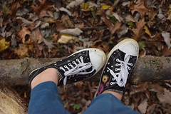 ({Sam~I~am}) Tags: shoes converse paint flowers black orange fall leaves ground autumn branch log nature people feet foot