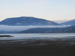 Our last morning of this trip. (jamica1) Tags: shuswap salmon arm bc british columbia canada