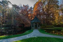 Gazebo Sunstar (4 Pete Seek) Tags: autumn autumncolors autumnleaves gibbsgardens gardens botanicalgardens fallcolors landscape landscapephotography nature naturephotography naturallight