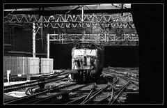 In the spotlight (david.hayes77) Tags: 50032 class50 englishelectric westmidlands birmingham birminghamnewstreet 1976 monochrome mono blackandwhite bw 0000 shadows ilford fp4 acutol wcml westcoastmainline gritty urban bns ohle
