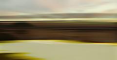 Boundary Bay (beelzebub2011) Tags: canada britishcolumbia vancouver boundarybay icm intentionalcameramovement