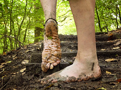 Woodland steps (Barefoot Adventurer) Tags: barefoot barefooting barefooter barefoothiking barefeet barefooted baresoles barfuss wrinkledsoles woodland woodlandsoles muddysoles earthing earthsoles earthstainedsoles earth healthyfeet connected callousedsoles autumnbarefooting anklet arch roughsoles ruggedsoles leathertoughsoles her grat shot