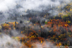 Clouds and fall colors (A look through lens) Tags: on1effects autumn cityscape clouds cloudy colors environment europe fallcolors forest italy landscape lightroom location mist mountain mountainscape nature photomatix piemonte plugin rain rainy season tonemapping wood woodscape baceno provinciadelverbanocusioosso italia provinciadelverbanocusioossola it