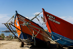 PROAS AL SOL (bacasr) Tags: mar viajando botes rojo barcos boats proa bow red travelling fishingboat ship piedraalta sea costa blue barcosdepesca roda coast azul portugal