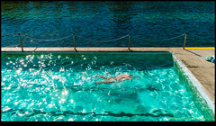 180507-8128-XM1.JPG (hopeless128) Tags: 2018 clovelly pool sydney swimmer australia newsouthwales au