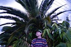sick widdit (Art Pharaoh) Tags: plant nursery nikon photography me rainingrain losangeles southbay