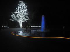 京都府立植物園 (penpus) Tags: 京都 京都府立植物園 イルミネーション kyoto
