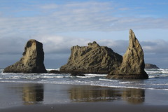 A shoe, an amorphous blob, and a tusk (rozoneill) Tags: bandon beach face rock coquille point river devils kitchen oregon coast trail hiking